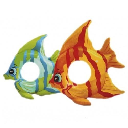 Круг Tropical Fish (3-6 лет) Intex 59219 - фото 10053