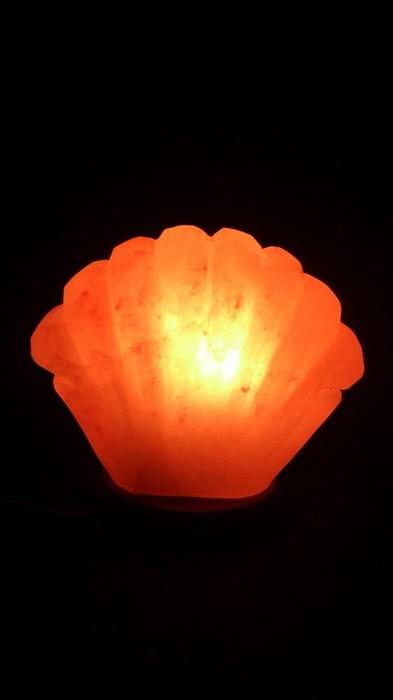 Соляной светильник STAY GOLD «Ракушка»  2,5 кг с диммером - фото 14453