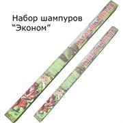 """Набор (6 шампуров) """"Эконом"""" НШЭ4"""