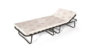 Раскладушка Анатомия с матрасом + рег.подголовник (раскладная кровать) 2040х800х380мм